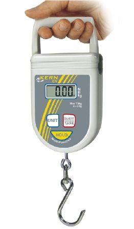 Hanging scale 50 g : 50 kg